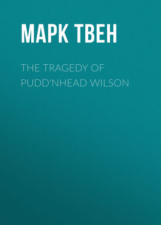 The Tragedy of Pudd\'nhead Wilson